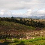 Behind Everett Ridge